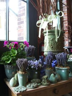 MARTHA MOMENTS: The Vintage Gardener