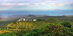 The Galápagos Islands: An Upscale Traveler's Guide - WSJ