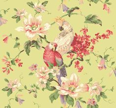 Wallpaper Designer Parrot and Cockatoo in Colorful Floral Vine on Pale Green