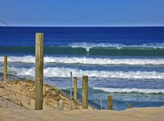 #1395 Blues, Coast, Seaside