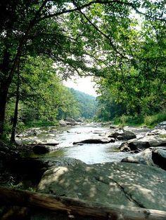 New River State Park in Boone, North Carolina.