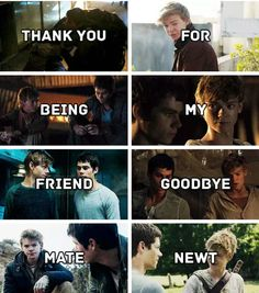 Newt didn't deserve to die. Maze Runner Quotes, Maze Runner Funny, Maze Runner Trilogy, Maze Runner Thomas, Maze Runner The Scorch, Maze Runner Movie, Maze Runner Series, Thomas Brodie Sangster, Newt Thomas