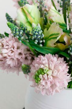 Als kleur en geur voor vrolijkheid zorgen, dan word je absoluut blij van de hyacint. Deze liefelijke bloem verspreid een zoet lenteparfum, weg dus met dit winterdip!
