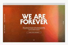 絢麗的We Are Forever網站 | MyDesy 淘靈感
