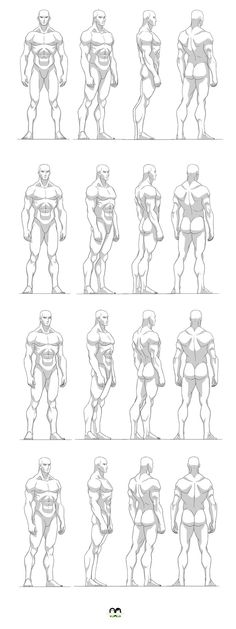 Exceptional Drawing The Human Figure Ideas. Staggering Drawing The Human Figure Ideas. Human Figure Drawing, Figure Drawing Reference, Body Drawing, Anatomy Reference, Art Reference Poses, Drawing Muscles, Anatomy Sketches, Body Sketches, Body Anatomy