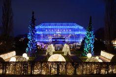 18. November: Stimmungsvoll beleuchtet ist der Botanische Garten zur Eröffnung des Christmas Garden . Auf einem etwa anderthalb Kilometer langen Rundgang gibt es eine Märchenlandschaft mit Lichtspielen, bunten Traumwäldern und Leuchtfiguren.