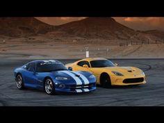 Viper vs. Viper. Who will Win?