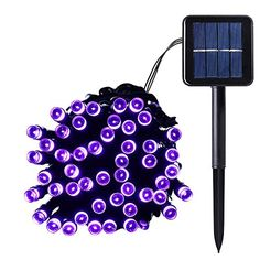 Qedertek Outdoor 100 LEDs Waterproof Solar String Lights, 40FT Starry Fairy Lighting Decor for Christmas Trees, Garden, Patio, Wedding, Party and Holiday Celebration, purple * Check this awesome product by going to the link at the image. This is an affiliate link.