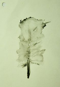 Black feather  Watercolor on paper