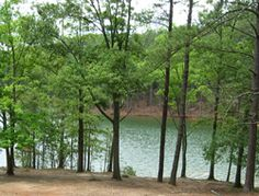 Red Top Mountain State Park - The Homestead Trail starts at the Visistor's Center and makes a 5.5 mile loop up and around Red Top Mountain then down to Allatoona Lake/Etowah River and back UP the mountain.  Fun trail.  Bring lots of water.