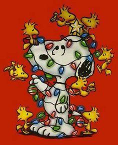 Snoopy & Woodstock Christmas - peanuts gang ready for Christmas! Peanuts Christmas, Charlie Brown Christmas, Noel Christmas, Winter Christmas, Christmas Lights, Vintage Christmas, Christmas Blessings, Peanuts Gang, Peanuts Cartoon