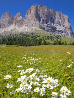 Sella Pass, Trento and Bolzano Provinces, Italian Dolomites, Italy// 4 hours north