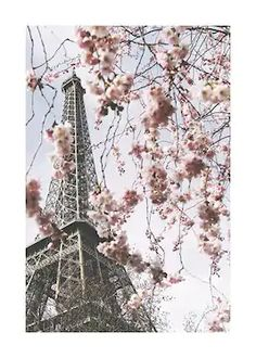 Kaart poster met aarde en steden | Kaart online | Desenio.nl Tour Eiffel, Paris Torre Eiffel, City Map Poster, World Map Poster, Map Posters, London Poster, New York Poster, Eiffel Tower Pictures, Country Wall Art