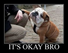 It's okay bro.