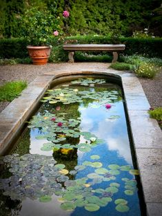 A gravel patio surrounds the elegant koi pond, and stone benches are placed throughout the space to allow people to enjoy the tranquility. - All For Garden Large Backyard Landscaping, Ponds Backyard, Landscaping With Rocks, Garden Ponds, Backyard Waterfalls, Koi Ponds, Sunken Garden, Pond Design, Garden Design