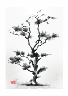For Sheila In Japanese Ink Painting Japanese Tree Drawing Sakura Painting, Japanese Ink Painting, Cherry Blossom Painting, Japanese Watercolor, Chinese Landscape Painting, Japanese Drawings, Landscape Drawings, Chinese Painting, Landscape Paintings