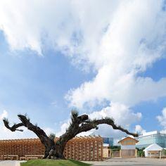 会場に入ると青空が広がり、やわらかなシルエットの木が迎えてくれる