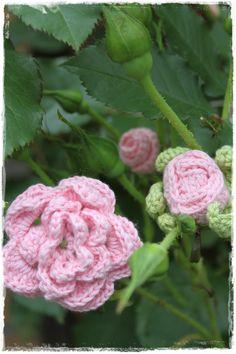 Gehaakte rozen