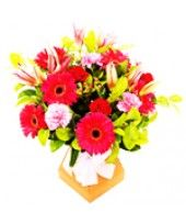 Are you in search of top-quality and affordable Queen of My Heart online? Go for an exciting Queen of My Heart online shopping experience only at FlowerzNCakez. Unique Valentines Day Gifts, Best Valentine's Day Gifts, Gifts For Your Boyfriend, Most Romantic, My Heart, Queen, Stuff To Buy, Ideas