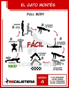ᐅ 【 Fortalece y entrena tu cuerpo desde Casa 】 ᐊ DECALISTENIA Crossfit Moves, Gym Workouts, At Home Workouts, Boxing Training, Boxing Workout, Weight Training, Coron, Full Body Calisthenics Workout, Gym Tips
