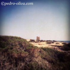 #salinas #ibiza #ibizaplaya #ibizabeach #pedroolivaibiza #escavallet #ibizastyle