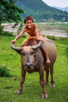 "Vietnam - ""Young boy on his buffalo"" - What if this were your child? ♥"