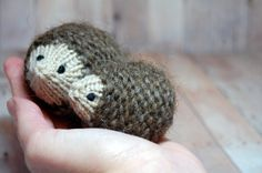 Hedgehogs Ornament Toy  Knit Waldorf Soft Toy by SweetBauerKnits, $26.00