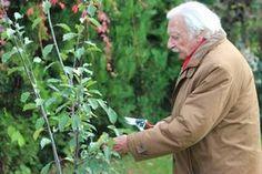 Aki megteheti, használja ki a kertjének adottságait és ültessen minél több gyümölcsfát. Megmutatom, hogyan érdemes hozzálátni. Garden Park, Garden Sculpture, Outdoor Decor, Plants, Gardening, Minden, Lawn And Garden, Plant, Planets