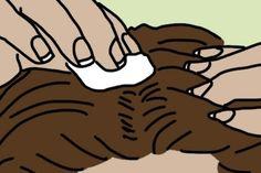 Los adolescentes suelen tener acné en la cara y en la piel, y si necesitas eliminarlas esto es lo que debes hacer. CANELA Y NUEZ MOSCADA La canela es un antimicrobiano, antiviral y anti-hongos además de reducir el riesgo de enfermedades causadas por bacterias. La miel acelera el proceso de curación y desinfecta. El Limón …