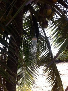 Kadjan Villa, pasarichenai Beach, Arugam Bay, Eastern Province, Sri Lanka.