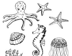 """Check out new work on my @Behance portfolio: """"underwater life"""" http://be.net/gallery/48782913/underwater-life"""