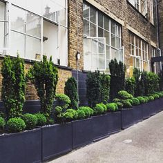 Stunning planters in Soho, pinned by www.vessou.com