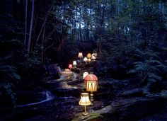 lighting the faerie trail