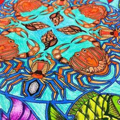 Instagram media anadircegcinti - #fabercastell #florestaencantada #florestaencantada2 #eutesteicores #oceanoperdidotop #jardimsecreto #jardimsecretofans #jardimsecretoinspire #jardimsecretotop #jardimsecretoshow #jardimcolorido #jardimdascores #lostoceancolors #terapianojardim #jardimsecretolove #livrojardimsecreto #adgcoresmagicas