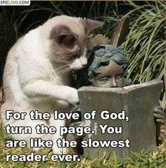 Pour l'amour de Dieu, tourne la page. Tu es le plus lent lecteur de la terre !