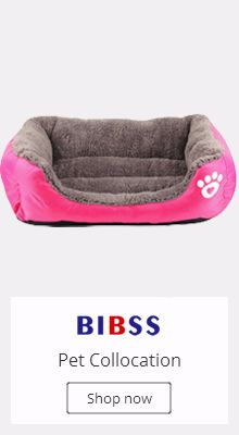 Buy pet dog and get free shipping on AliExpress.com