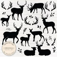 Check out this bumper pack of deer silhouettes! Fawns, stags and antlers galore for you to choose from and use however you like. Remember, deer arent just for Christmas, they can be combined with flowers for a quirky look!