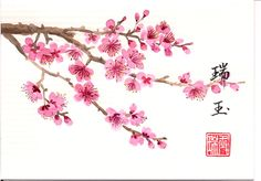 Japanese Design, Japanese Art, Japanese Plum, Mangas Tattoo, Blossom Tattoo, Photo Logo, Japanese Painting, Watercolor Pencils, Ink Painting