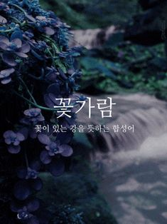 Wow Words, Korean Quotes, Korean Words, Message Quotes, Learn Korean, Typography, Lettering, Couple Aesthetic, Korean Language