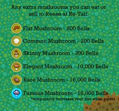 Mushrooms Guide