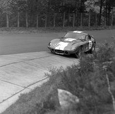Sports Car Racing, Race Cars, Ferrari, Photography, Image, Snakes, Drag Race Cars, Photograph, Fotografie