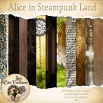 Alice in Steampunk land http://berryapplicious.com/store/index.php?main_page=product_info&cPath=1_156&products_id=10097