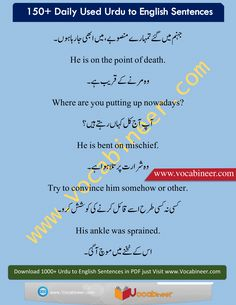Common English sentences, Daily Used English Sentences, Easy English Sentences, English Sentences, English Sentences for beginners, English sentences with Urdu, Simple English Sentences, Urdu to English Sentences, English to Urdu Sentences, English to Urdu/Hindi Sentences, Hindi to English Sentences, English to Hindi translation, Hindi to English translation, English sentences in Hindi/Urdu, English sentences in Urdu, Urdu Hindi to English phrases, www.vocabineer.com