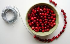 Do you know about the simple magic of cranberries and wire? I certainly didn't until my good friend, Kathrin , told me about the little orn...