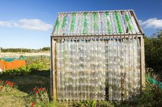 recycle plastic bottles, greenhouse, diy,