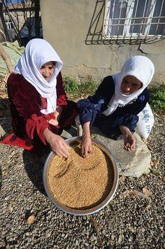 Hakkari'nin Yüksekova ilçesinde yaşayan kadınlar, dibek taşında atalarından kalma yöntemlerle buğday dövme geleneğini sürdürüyor.