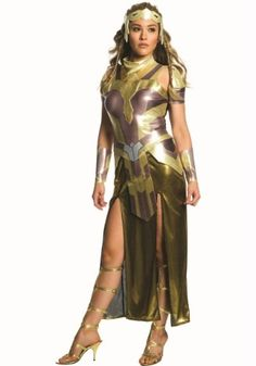 https://images.halloweencostumes.com/products/42431/1-2/deluxe-hippolyta-womens-costume.jpg