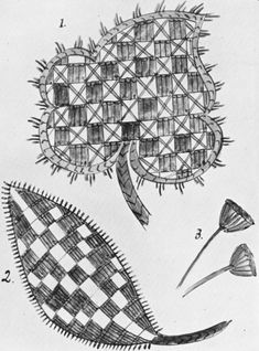 The Project Gutenberg eBook of Jacobean Embroidery, by Ada Wentworth Fitzwilliam and A. Jacobean Embroidery, Embroidery Patterns Free, Hand Embroidery Stitches, Diy Embroidery, Embroidery Designs, Gold Work, Needle And Thread, Needlework, Quilts