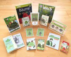 Materialwiese: Bäume des Waldes im Sachunterricht der Grundschule