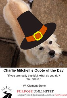 """Charlie Mitchell's Quote of the Day! """"If you are really thankful, what do you do? You share."""" - W. Clement Stone"""